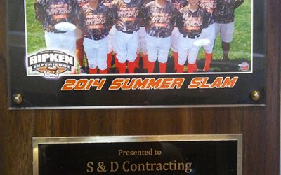 S&D Contracting Supports Palm Beach Vipers
